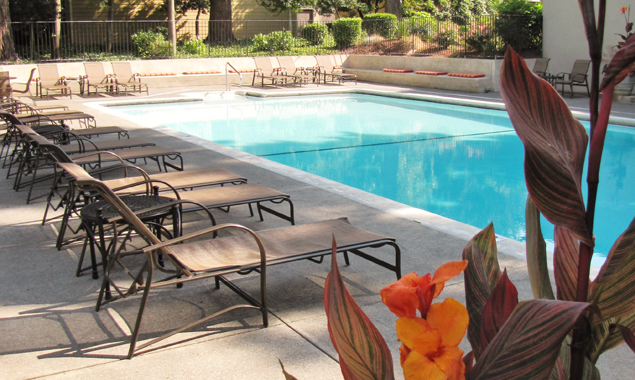 frank-estate-pool.jpg